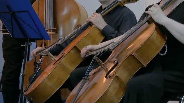 Frau und Mann spielen Cello