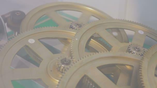 Gear wheels system rotation