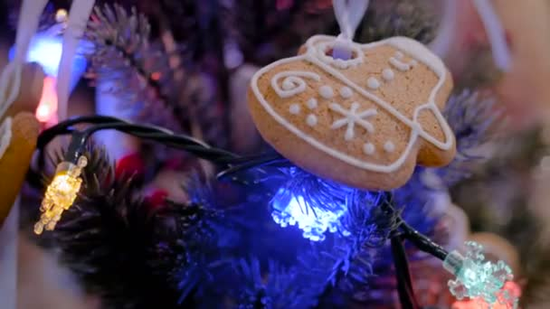 Decorazione di festa di Natale con il biscotto di Pan di zenzero