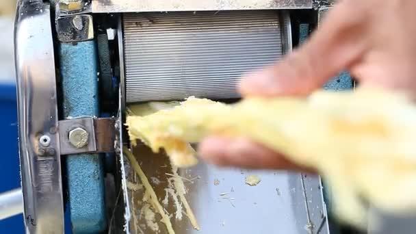 Bio friss gyümölcslé. Cukornád Juice gép, nyers cukornád feldolgozása kézzel