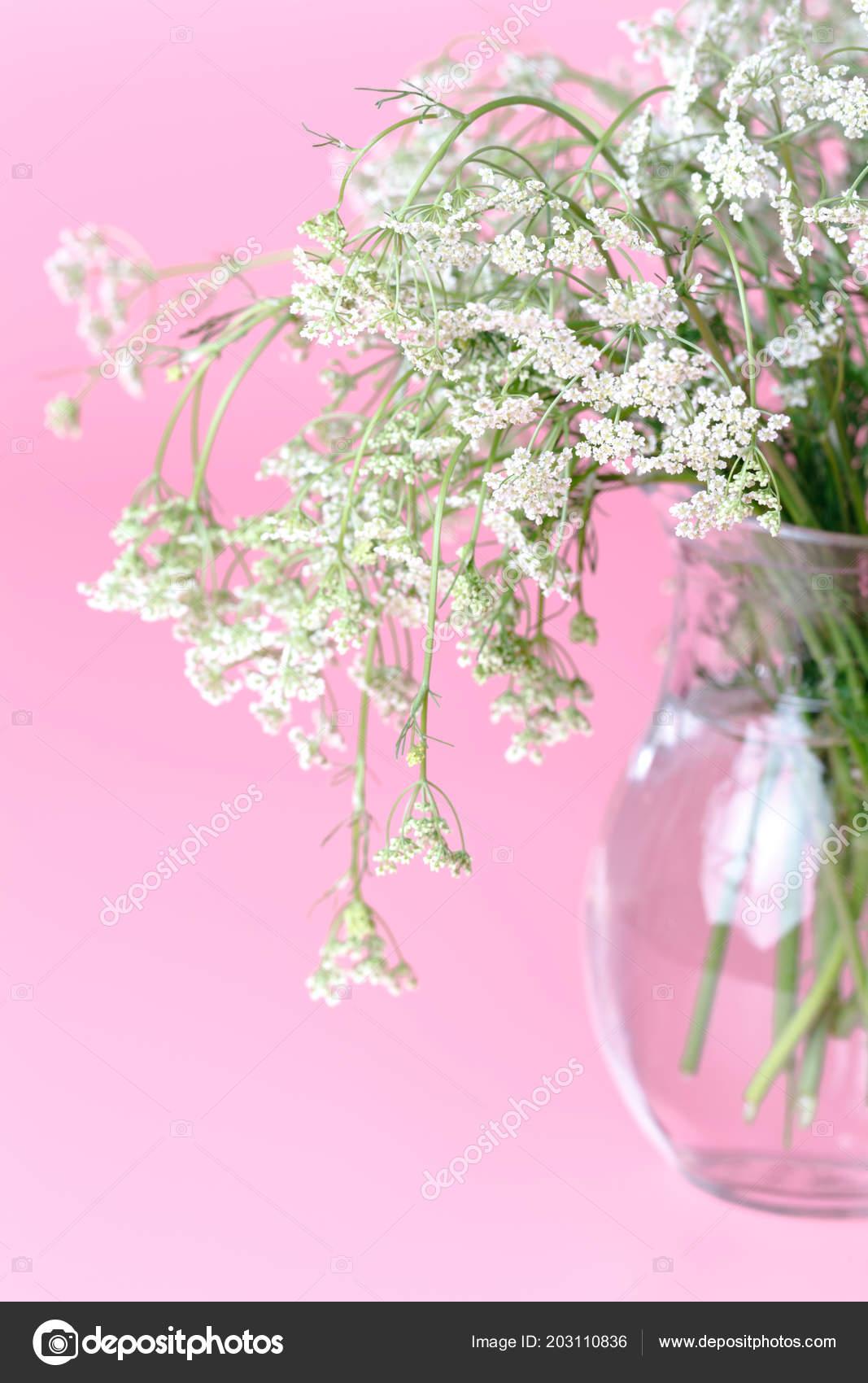Small fragrant spring flowers stock photo andreycherkasov 203110836 small fragrant spring flowers stock photo mightylinksfo