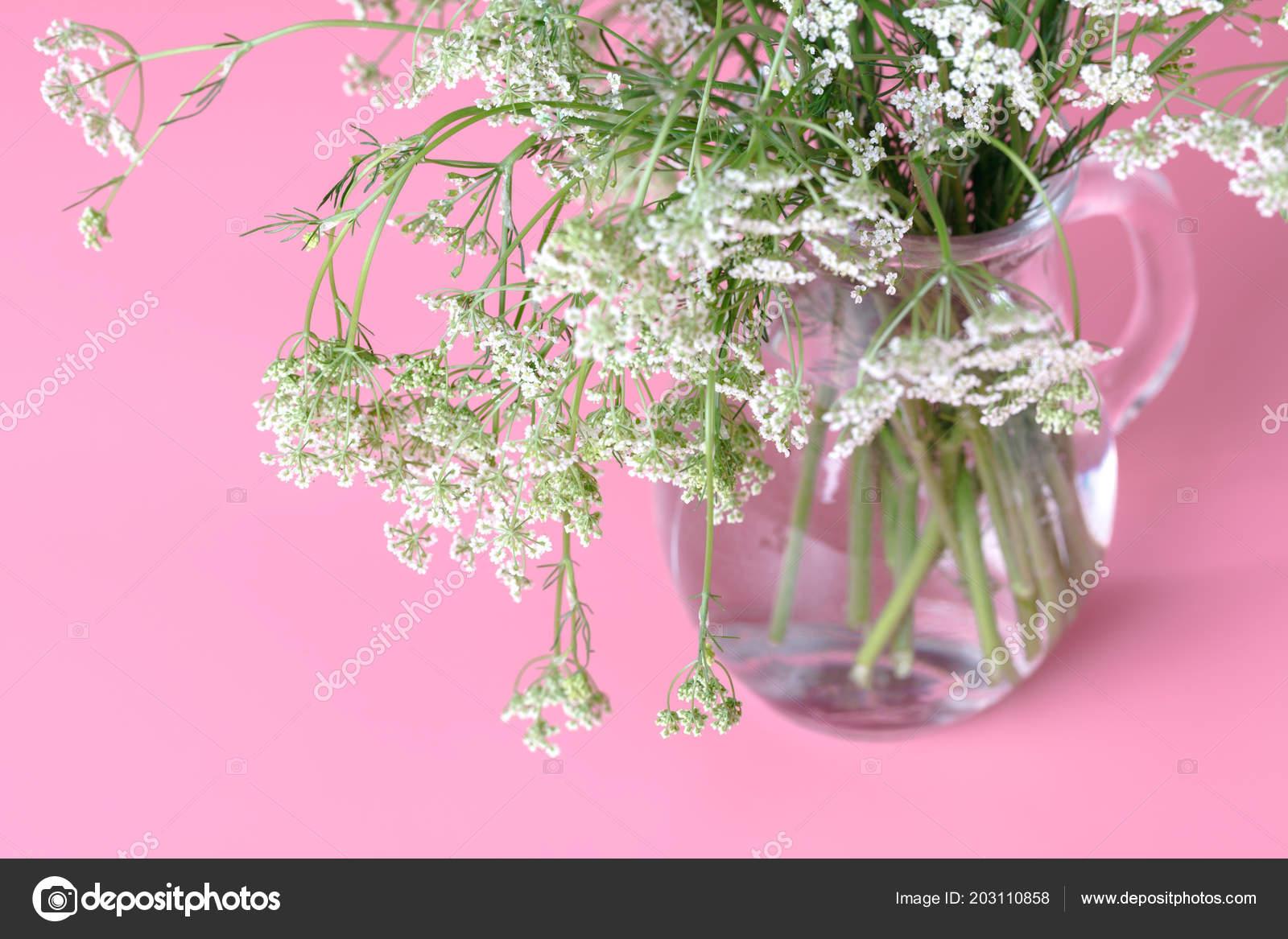 Small Fragrant Spring Flowers Stock Photo Andreycherkasov 203110858