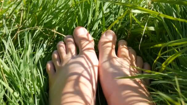 Ženské nohy v písku proti pozadí zelené trávy