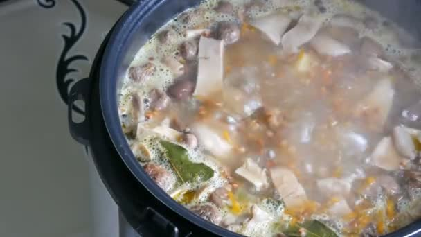 Boiling in pan mushroom soup with carrots bay leaf potatoes and spices close up view
