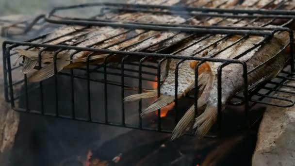 Freshwater river fish crucian carp Carassius fried on fire and smoke grill close up view. Delicious grilled fish on the fire