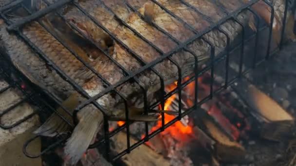 Sladkovodní rybka z kapra Karassia smažená na ohni a kouřový gril zblízka. Lahodné grilované ryby na ohni