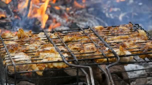 Fleisch Grillen auf Grill Grill auf der Natur. Frischfleisch braten, Hühnchen grillen, Wurst, Kebab, Hamburger, Urlaub. Der Mensch bemüht sich um Bereitwilligkeit. Hintergrund des Feuers
