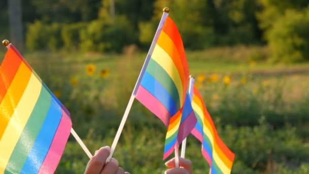 Ženské ruce drží duhové vlajky na pozadí zelené trávy a lesa v letní slunečný den. Symbol homosexuálních lesbických transsexuálních homosexuálních práv, aktivismus miluje rovnost a svobodu