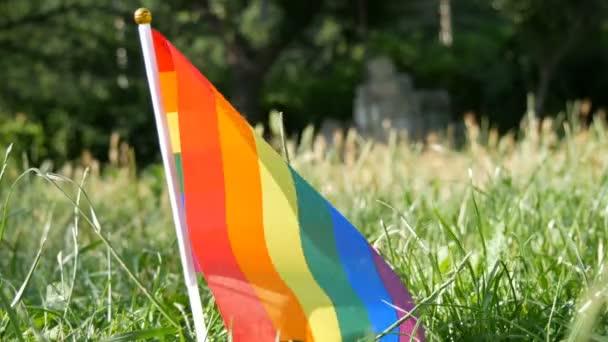 Duhové vlajky na trávníku houpající se ve větru, Symbol Lgbt Gay lesbických transsexuálních teploušských práv, aktivismus miluje rovnost a svobodu