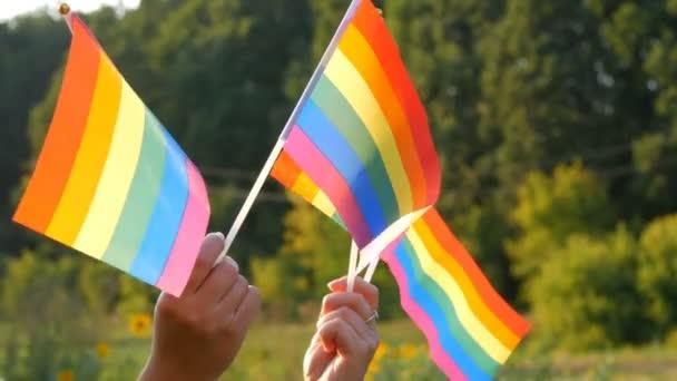 Frauenhände mit Regenbogenfahnen vor grünem Gras und Wald an einem sonnigen Sommertag. Symbol für schwul-lesbische Transgender queere Rechte, Aktivismus Liebe Gleichheit und Freiheit