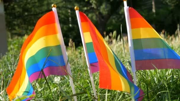 Symbol für schwul-lesbische Transgender-Rechte, Aktivismus lieben Gleichberechtigung und Freiheit Regenbogenfahnen auf dem Rasen, die an warmen Sommertagen im Wind schwanken