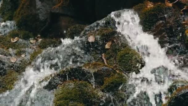 Green moss stones in Carpathian mountains. Wonderful mountain waterfall cascade falls near the large grey rocks