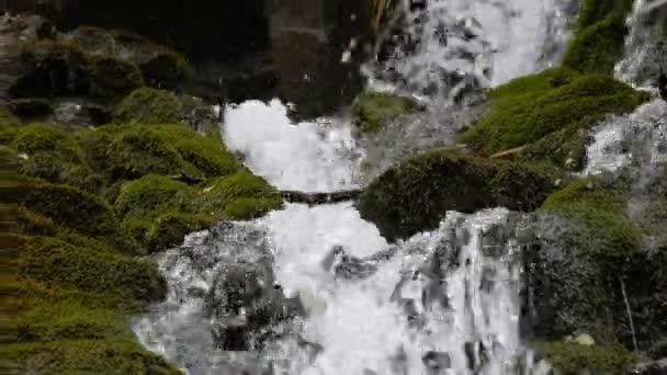 Proud vody teče mezi kameny. Čistá voda rychle padá z kopce tekoucí kolem tmavých vlhkých kamenů s mechem v Karpat.