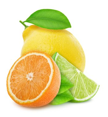 Different citrus fruits multicolored composition isolated on a white background.