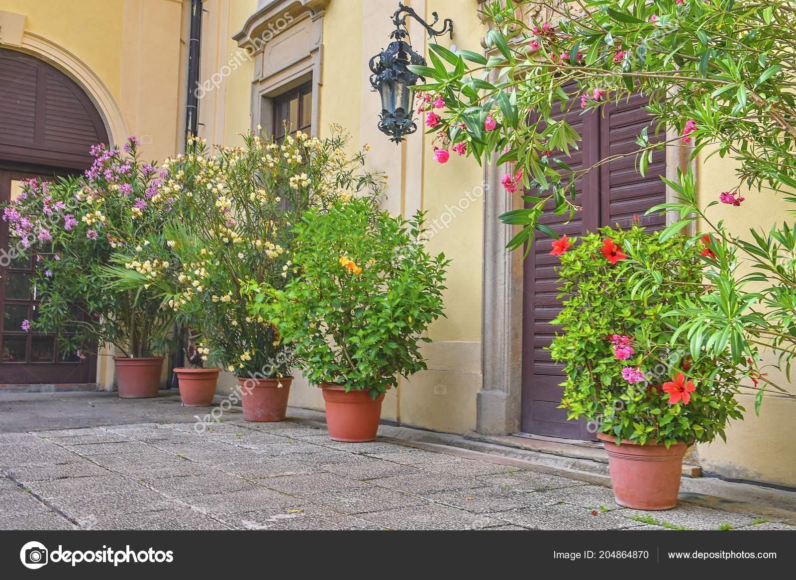 Arquitectura Historica Y Jardin Pequeno Estilo De Jardin Flores En