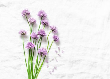 Food background with free space for text. Schnitt-onion, chives flowers on white background, top view