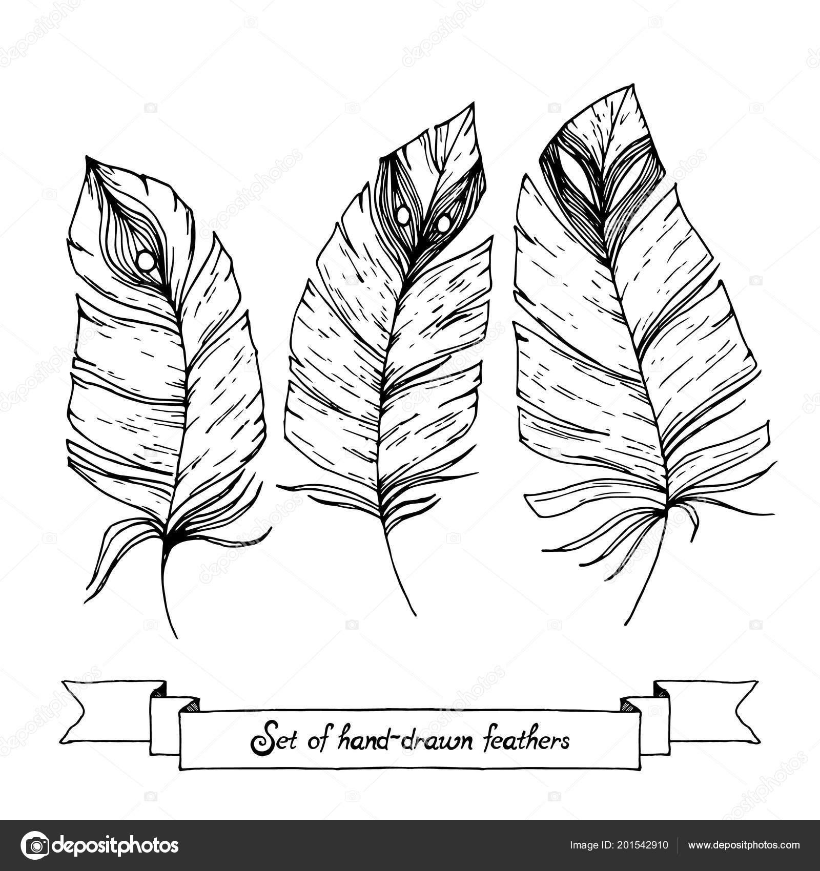 Conjunto De Croquis Dibujado Mano Doodle Plumas Aisladas Sobre Fondo