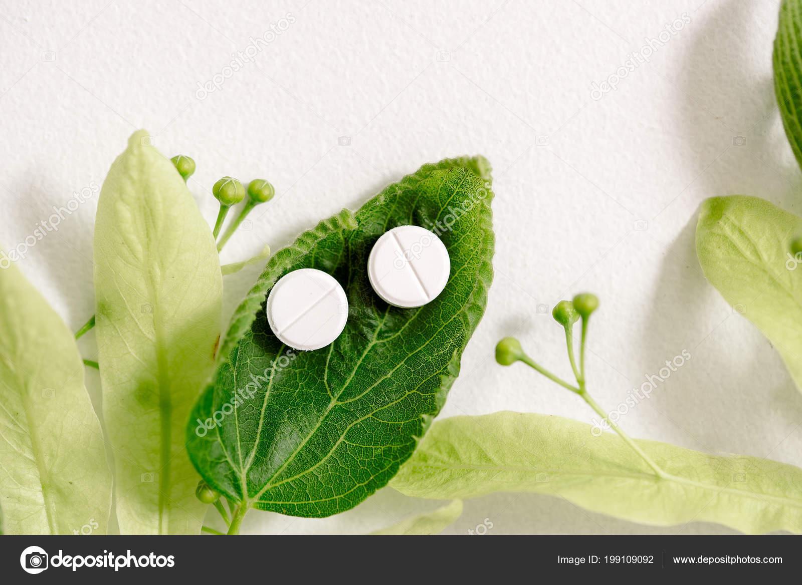 Лекарственное растение с белыми цветками