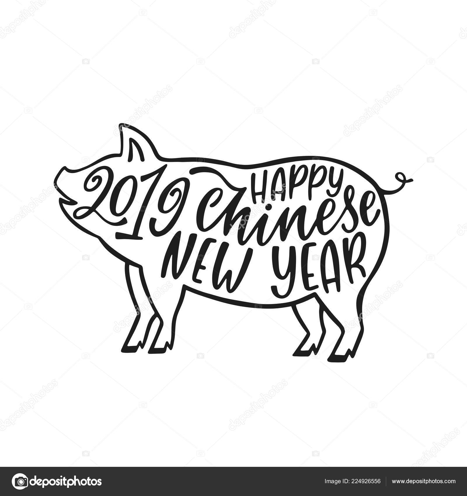 2019 Chinese New Year Of The Pig Hand Drawn Typography Design
