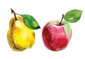 Set mit einer Birne im Schnitt, gelben Birnen in Aquarell gemalt. handgezeichnete Aquarell-Illustration von Früchten. Essen. Aquarell-Farbkleckse