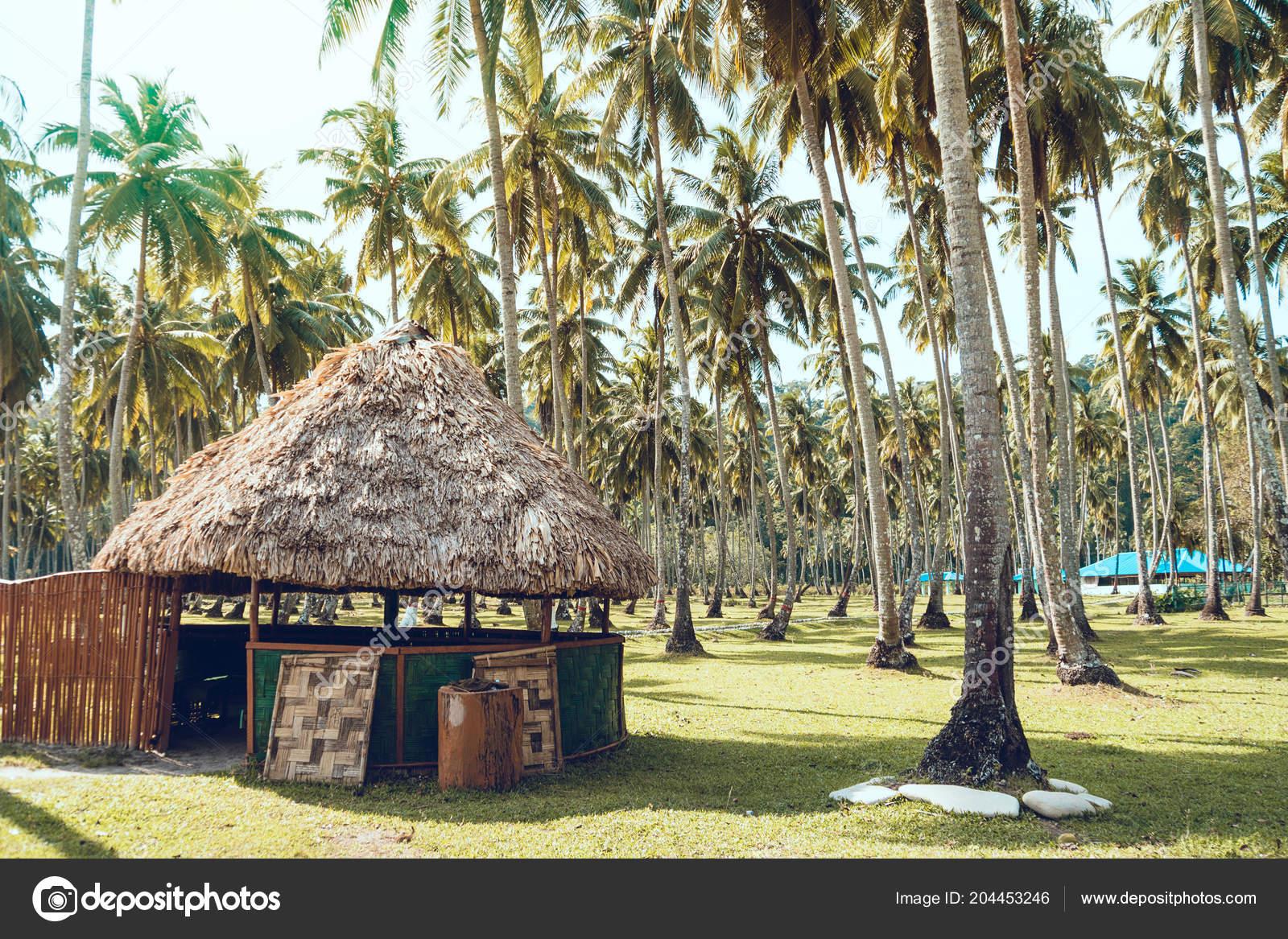 Pavillon Mit Reetdach Einer Künstlichen Palmenhain Andaman Und ...