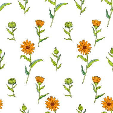 seamless pattern,floral,vector,orange,yellow,green,colorful,calendula,marigold,line art,medicinal plant,medicinal herb,officinal plant,illustration,grass,blossom,drawing,natural,bloom,meadow,herbal