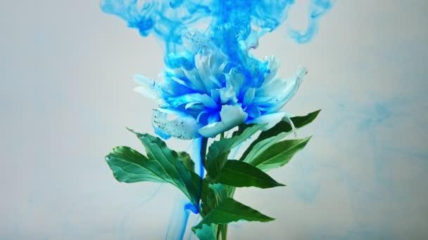 auf schöne Blumen, die Farbe gießen