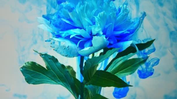 A gyönyörű virágok ömlött festék