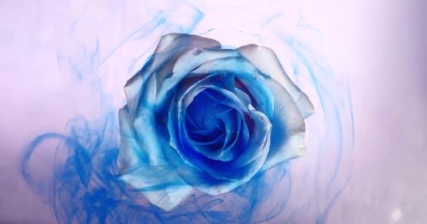 Horní pohled na barevné roztažení barvy na krásnou točící se květinu.
