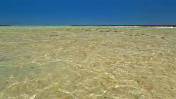 Malé laguny v Shark Bay