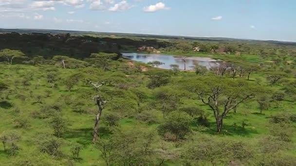 Panorama z národní Park Serengeti