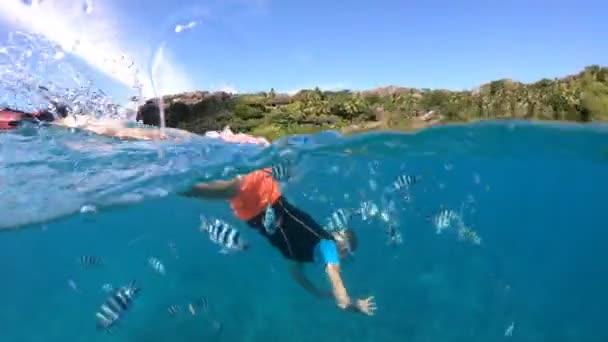 Snorkeling ragazza in Seychelles vista divisa