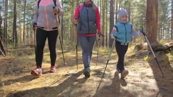 Nő ezt a Nordic walking, a természetben. Lányok és a gyerekek használja a botok trekking és nordic botok, hátizsák. Család utazik, és megy sport. Őszi erdő.