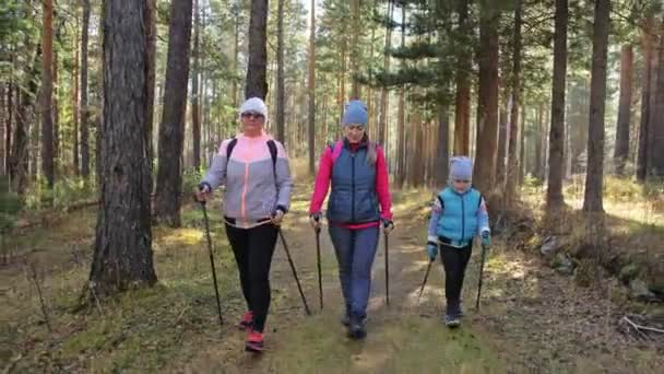 Woman do Nordic walking in nature. Girls and children use trekking sticks and nordic poles, backpacks. Family travels and goes in for sports. Kid is learning from mother and grandmother the proper