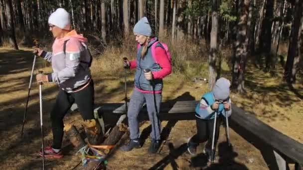 Frauen machen Nordic Walking in der Natur. Mädchen und Kinder benutzen Trekkingstöcke und Nordic-Stöcke, Rucksäcke. Familie reist und treibt Sport. Herbstwald.