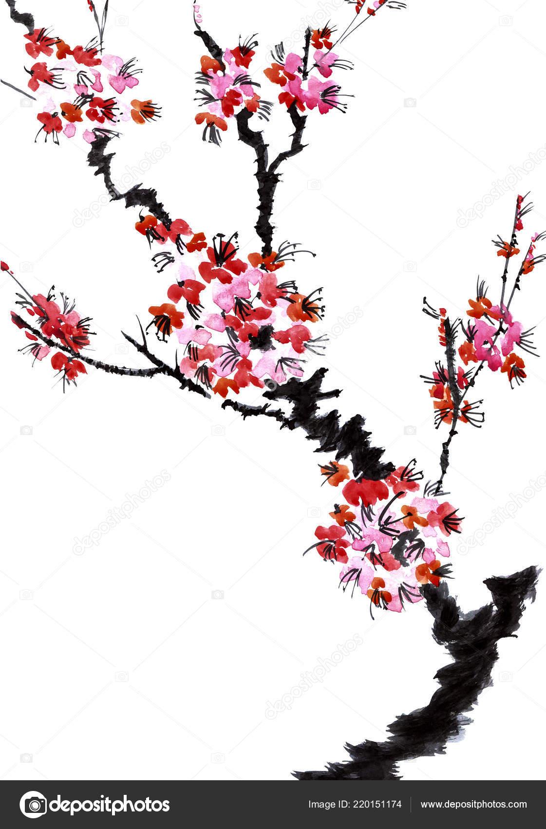 Une Branche Arbre Fleuri Fleurs Roses Sakura Aquarelle ...