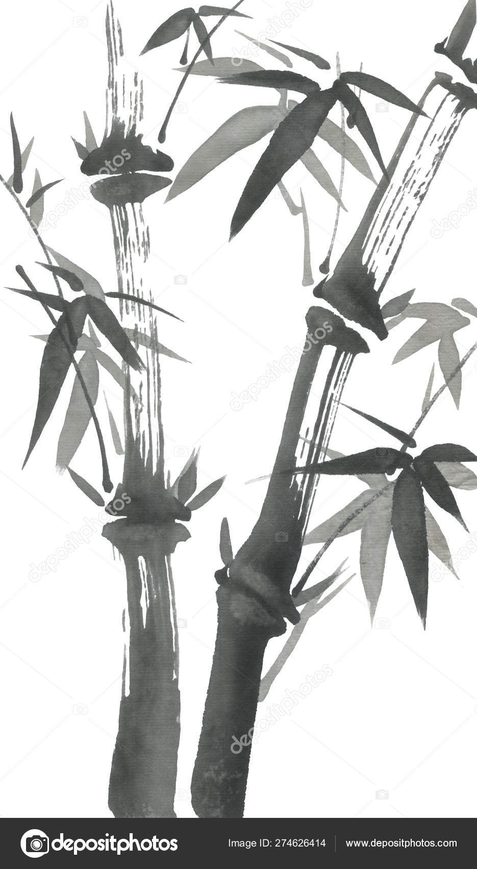 Bamboo Branches Leaves Nature Japan Watercolor Ink Illustration Style Sumi Stock Photo C Marinakutukova 274626414