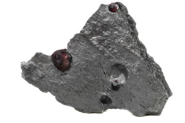 Macro mineral stone garnet  in the rock on a white background close-up