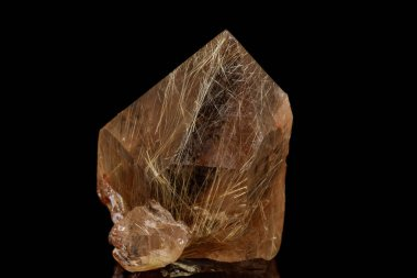 Macro stone mineral Rutile in quartz on a black background