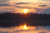 Fotografie Panorama of fiery sunset with clouds delicate veils over tops of pine forest