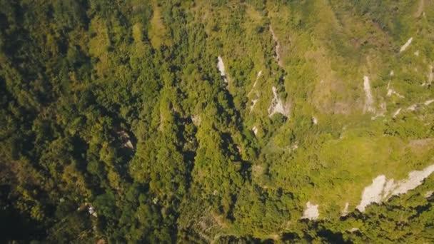 Pohled na horské lesní krajiny. Bali