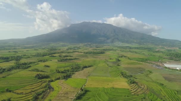 mount isarog Mt isarog climbing notes be the first to submit your climbing note please submit any useful information about climbing mt isarog that may be useful to other climbers.