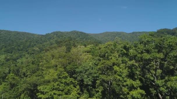 Letecký pohled na hory s zelený Les, stromy, džungle s modrou oblohou. Svahy hor s tropickým deštným pralesem. Filipíny, Luzon. Luxusné v Asii