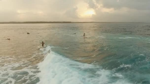 Surfers on the water surface