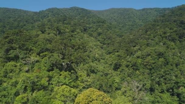 Letecký pohled na hory se zeleným lesem, stromy, džungle s modrou oblohou. Svahy hor s tropickým deštným pralesem. Filipíny, Luzone. Tropická krajina v Asii.