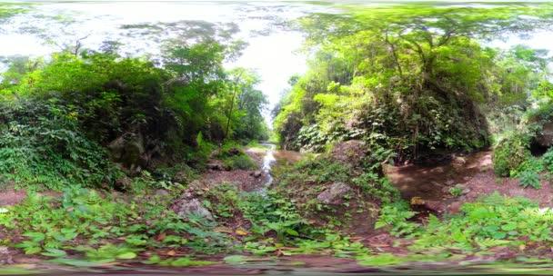 fiume nella giungla in asia vr360