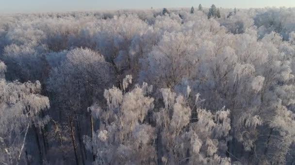Zimní krajina v krajině