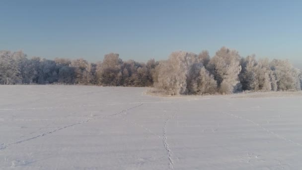 Winterlandschaft in Landschaft