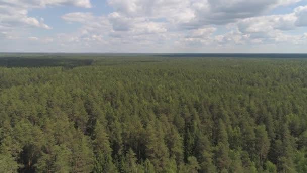 Let nad zelený Les