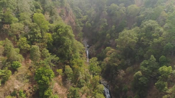 deštných pralesů tropické krajiny a vodopád